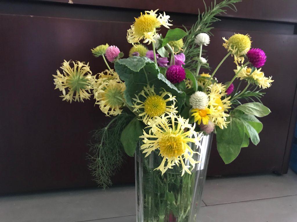 Cut flowers in vase