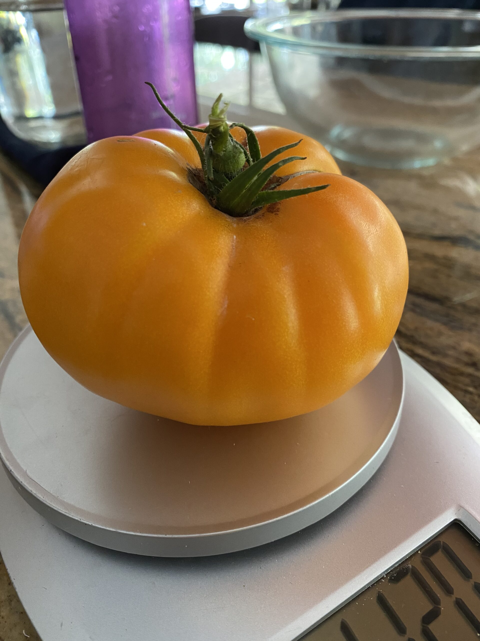 Large orange beefstead tomato on a kitchen scale